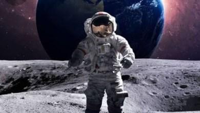 صورة دراسة.. ولادة الأطفال فى الفضاء لم تعد خيالا علميا