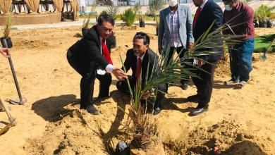صورة سفير إندونيسيا يزرع شجر نخيل بالوادي الجديد
