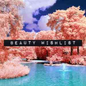 beauty wishlist