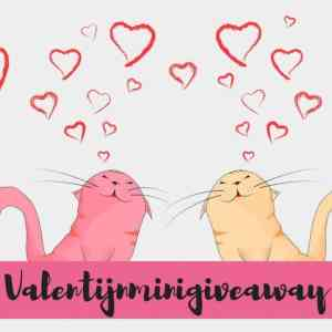 Het regent liefde tijdens de Valentijnminigiveaway!