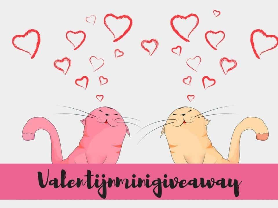 Valentijnminigiveaway