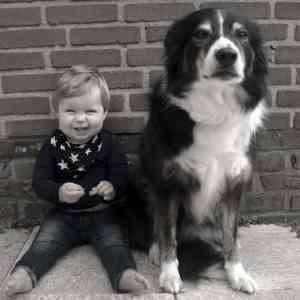 Dreumes en hond | Stress signalen