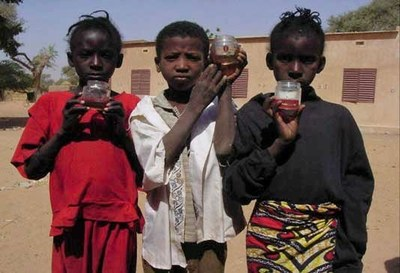 School children in Niger with gross hematuria (blood in urine) caused by schistosomiasis (photo by Jurg Utzinger)