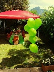 Kiddies table, chairs and Hungry Caterpillar decor - all Limitless Events.