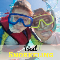 Beginners Guide to Best Snorkeling in Maui - Hawaii vacation 11