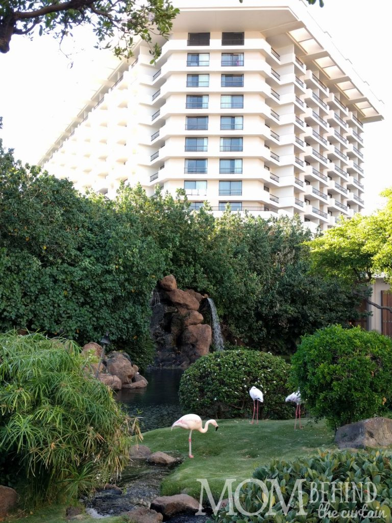 The best place to stay Maui - Hyatt Regency Resort grounds