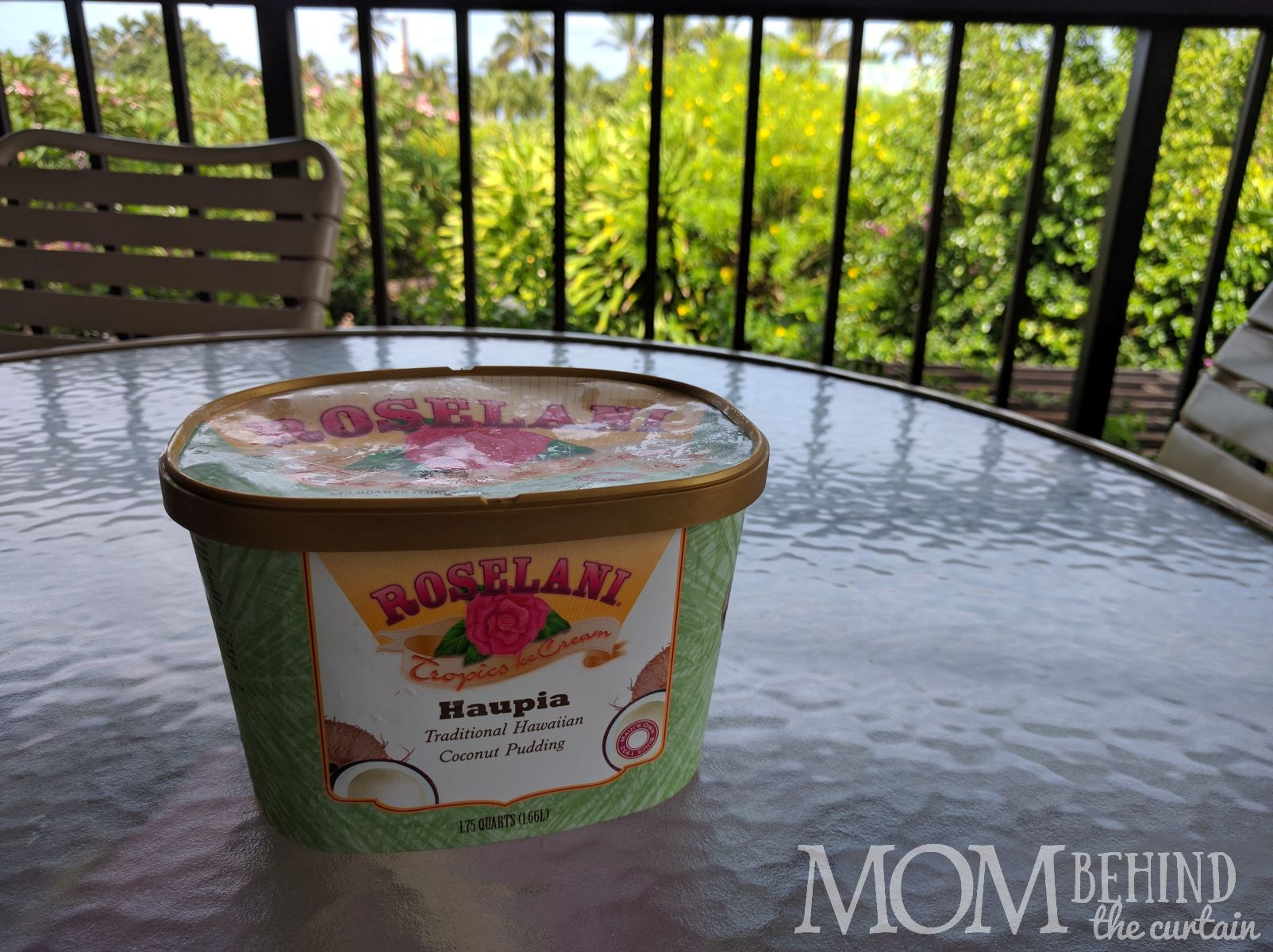 coconut custard ice cream - what to eat in Maui