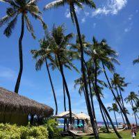 Maui Hawaii - First Trip Travelers Guide