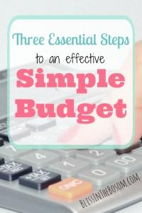 basic budget