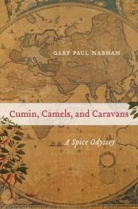 cumin-camels-and-caravans