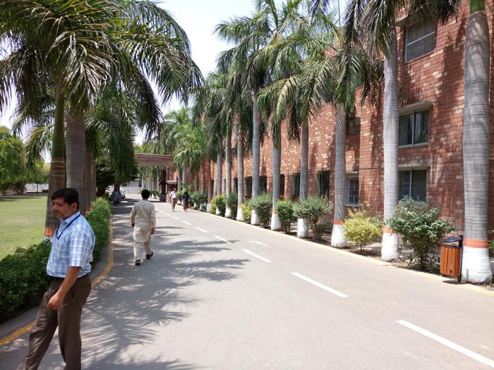 Ahmadi office
