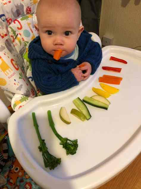 Baby led weaning food