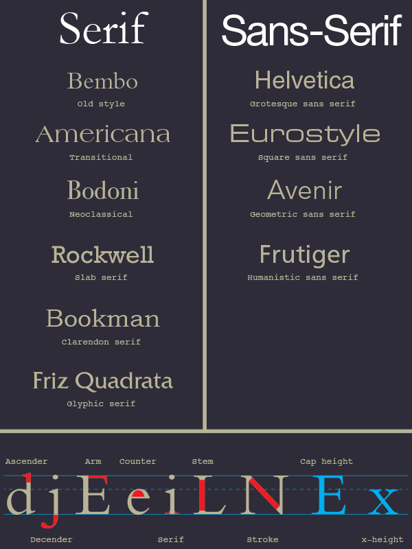 Advanced Typography Infographic