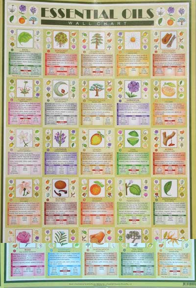 Wall Charts By Dynamo House Momentum98