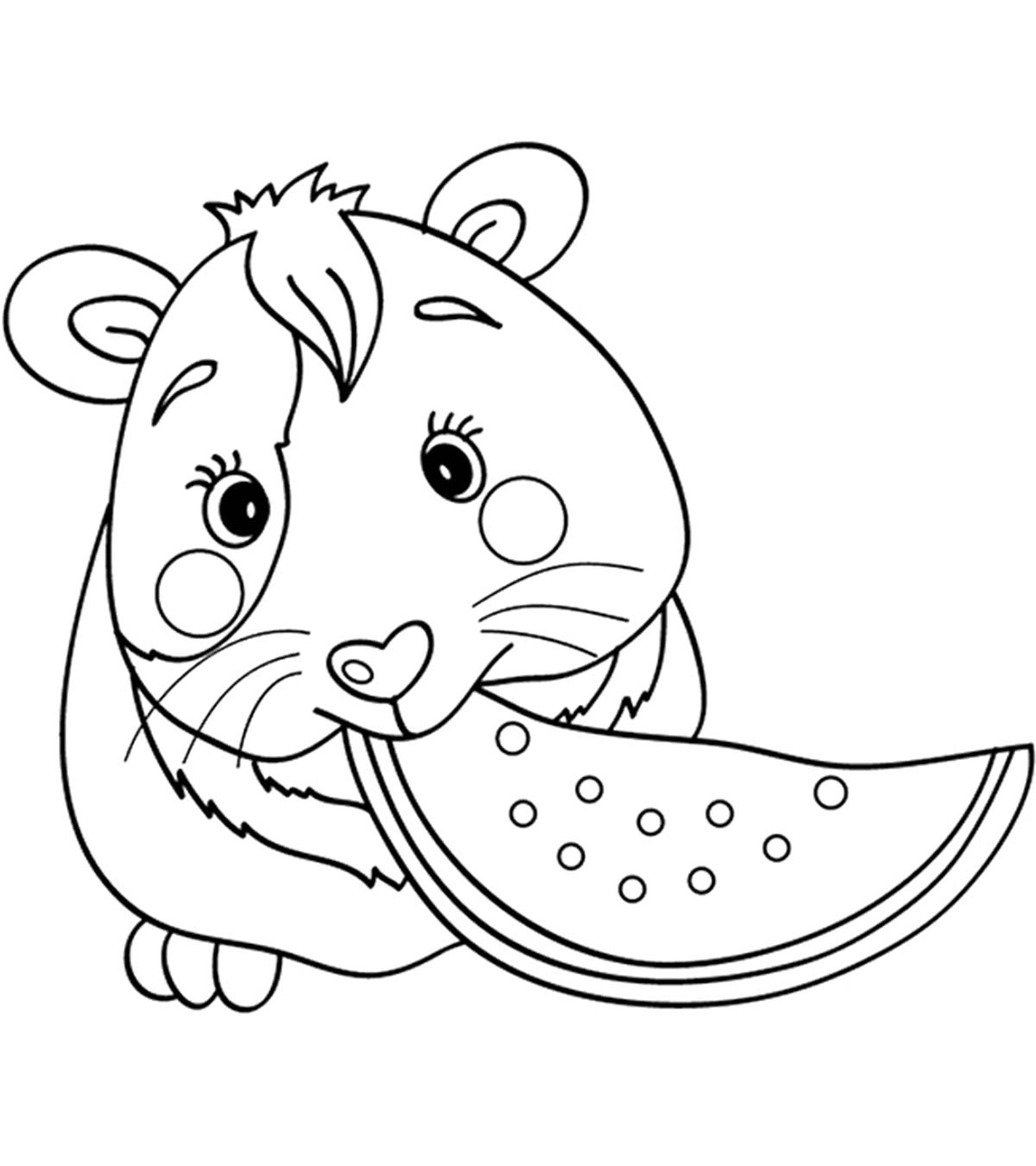 Cartoon Guinea Pig Coloring Pages