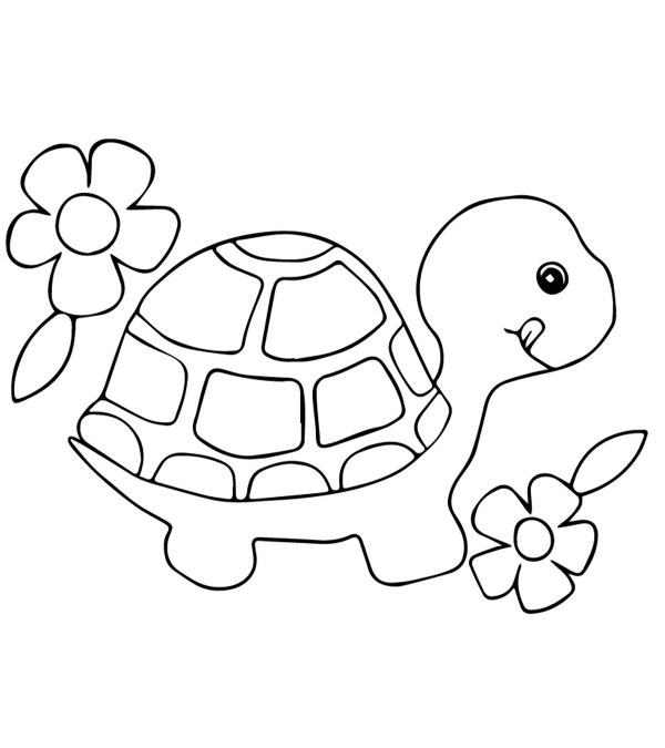coloring pages turtle # 1