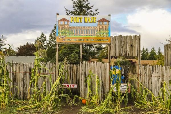 joes place farms