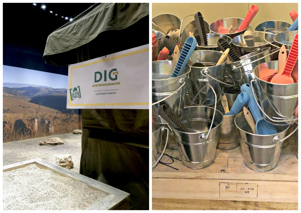 dig like a paleoanthropologist at the Origins excavation at the Perot Museum