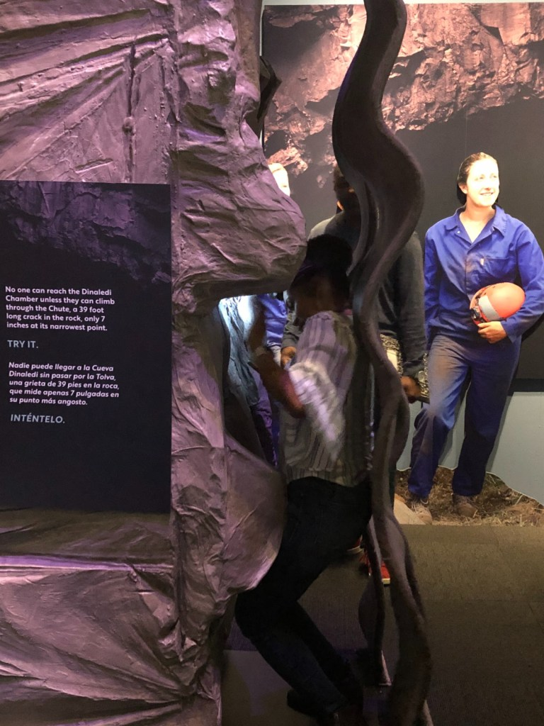 "Image of a simulation of ""the Chute"" at the Perot Museum's Origins exhibition"