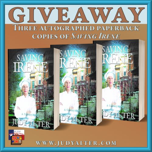 Image of giveaway for Saving Irene book blitz