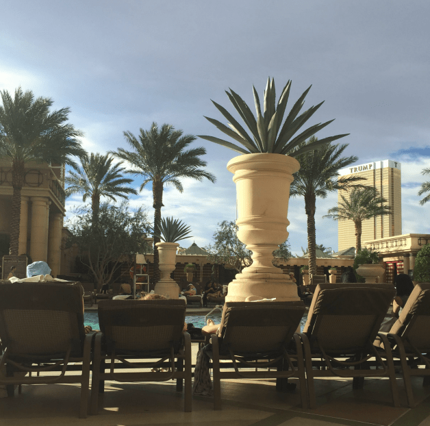 48 hours in Vegas. Where to stay, eat and play. mommatogo.com