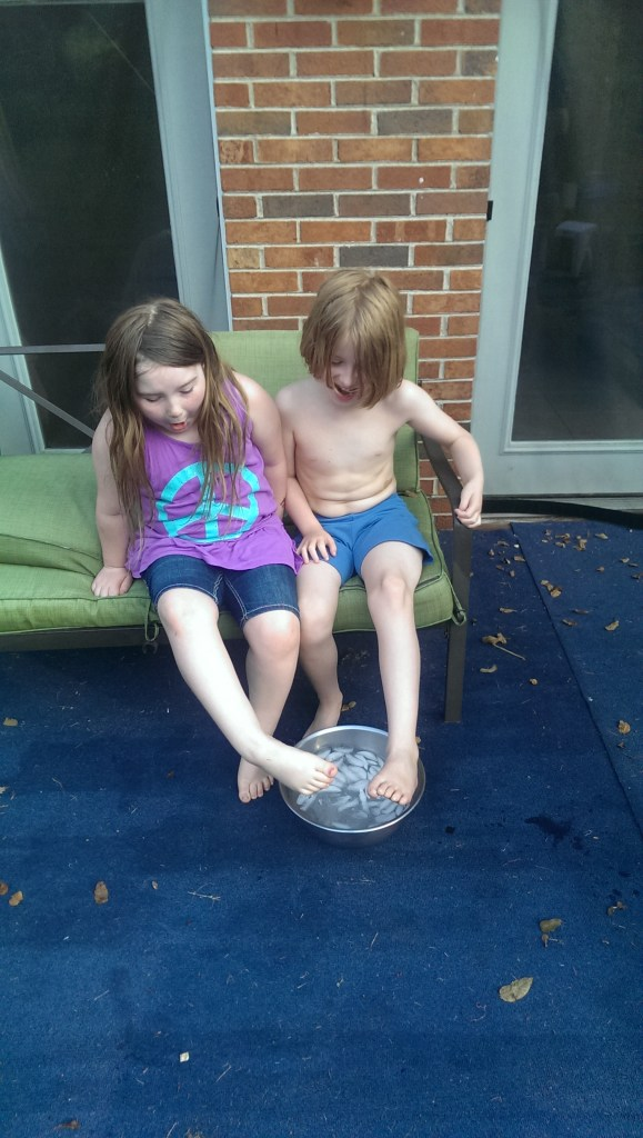 Yessa and Buster's idea of the Ice Bucket Challenge.