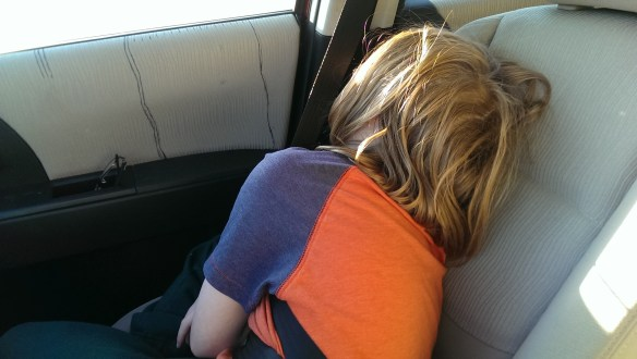 Buster conked out first. This was his drive home in the car.