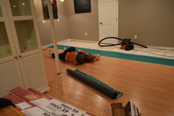 They needed to test the new flooring for snuggles.