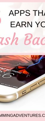 Mobile Apps That Earn You Cash Back