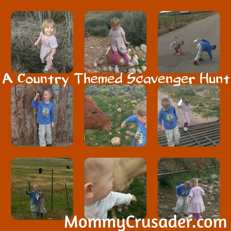 A country themed scavenger hunt | MommyCrusader.com