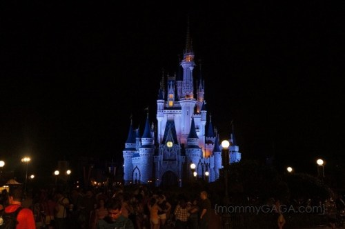 Walt Disney World Magic Kingsom Castle at Night