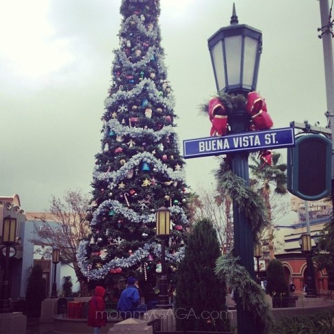 Lovely tree on Buena Vista Street in California Adventure, Christmas Time at Disneyland