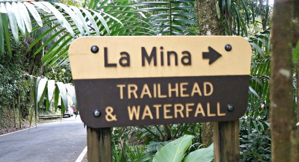 La Mina Trailhead and Waterfall, Puerto Rico