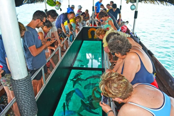 Koka Lagoon Cruises glass bottom boat, Rarotonga, Cook Islands