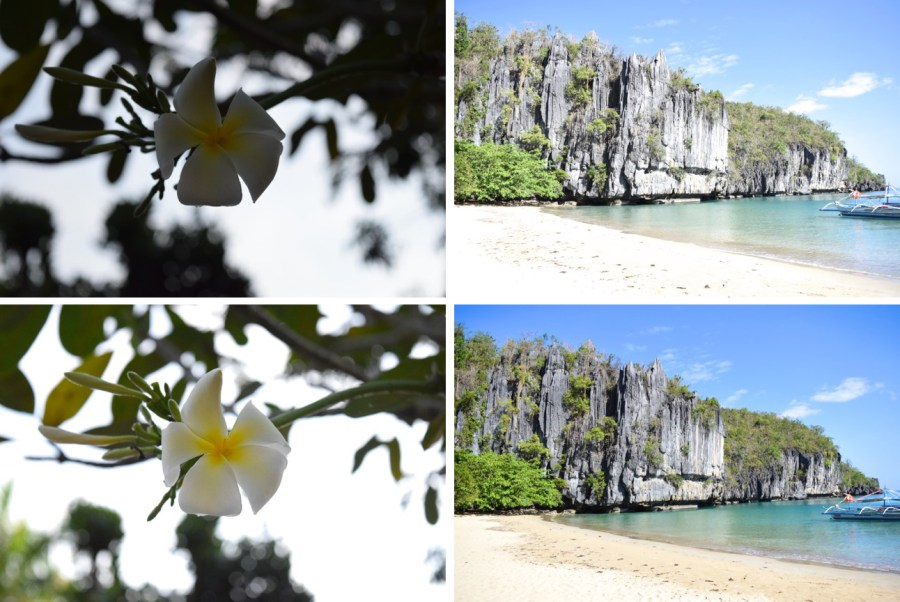 Nikon D3300 exposure compensation before and after