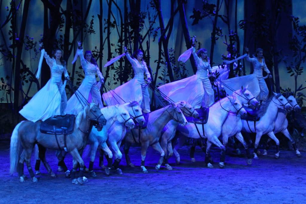 Cavalia's Odysseo horses