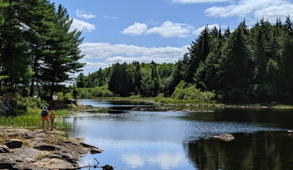 Algonquin Park guided canoe trips