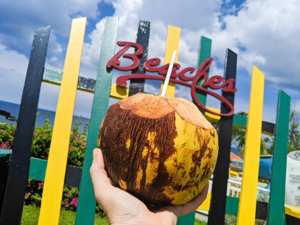 coconuts at beaches ocho rios