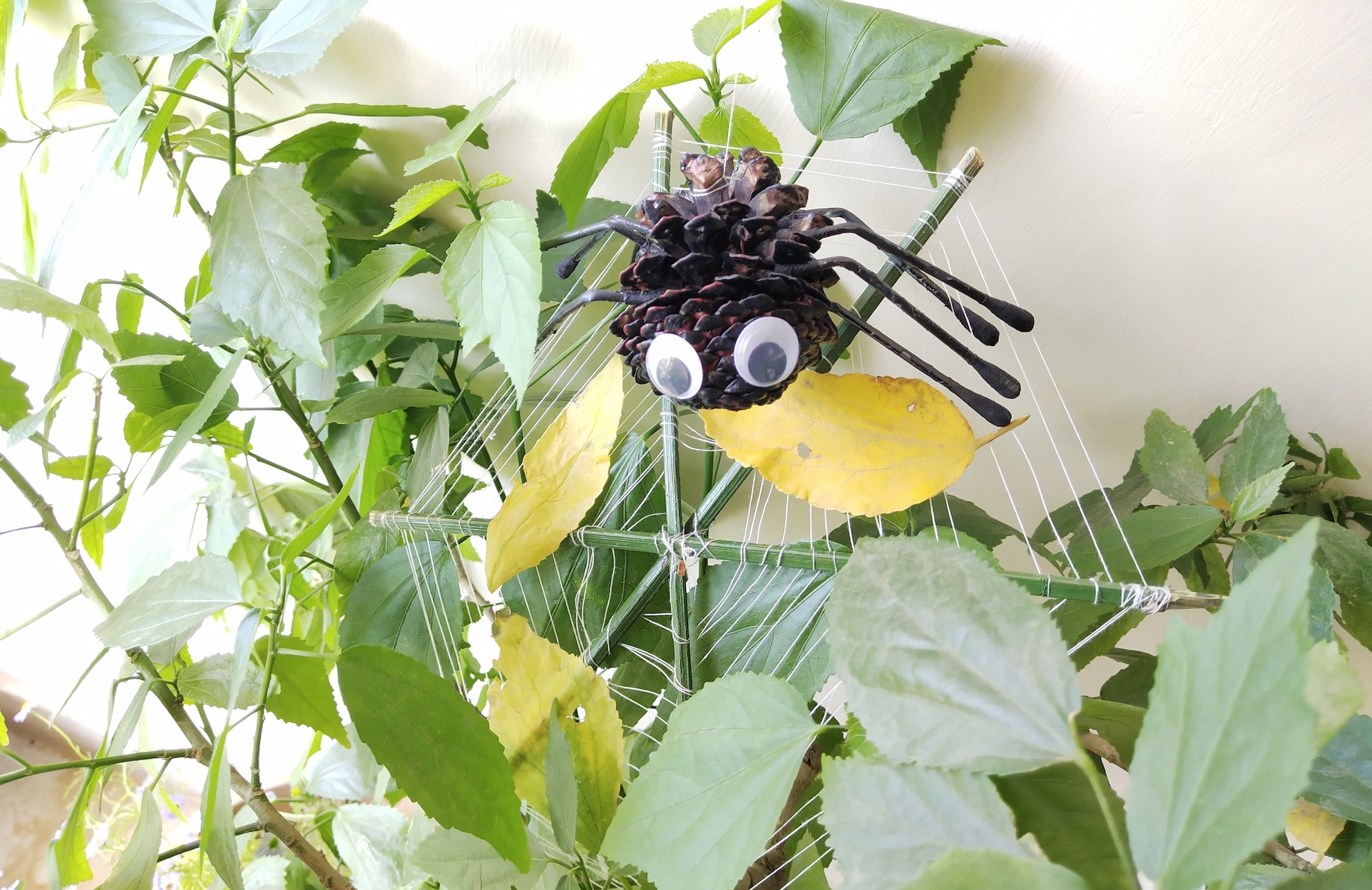 DIY PineCone Spider: Art and craft for kids