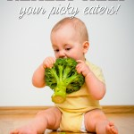 10 Tips to Help Your Picky Eaters