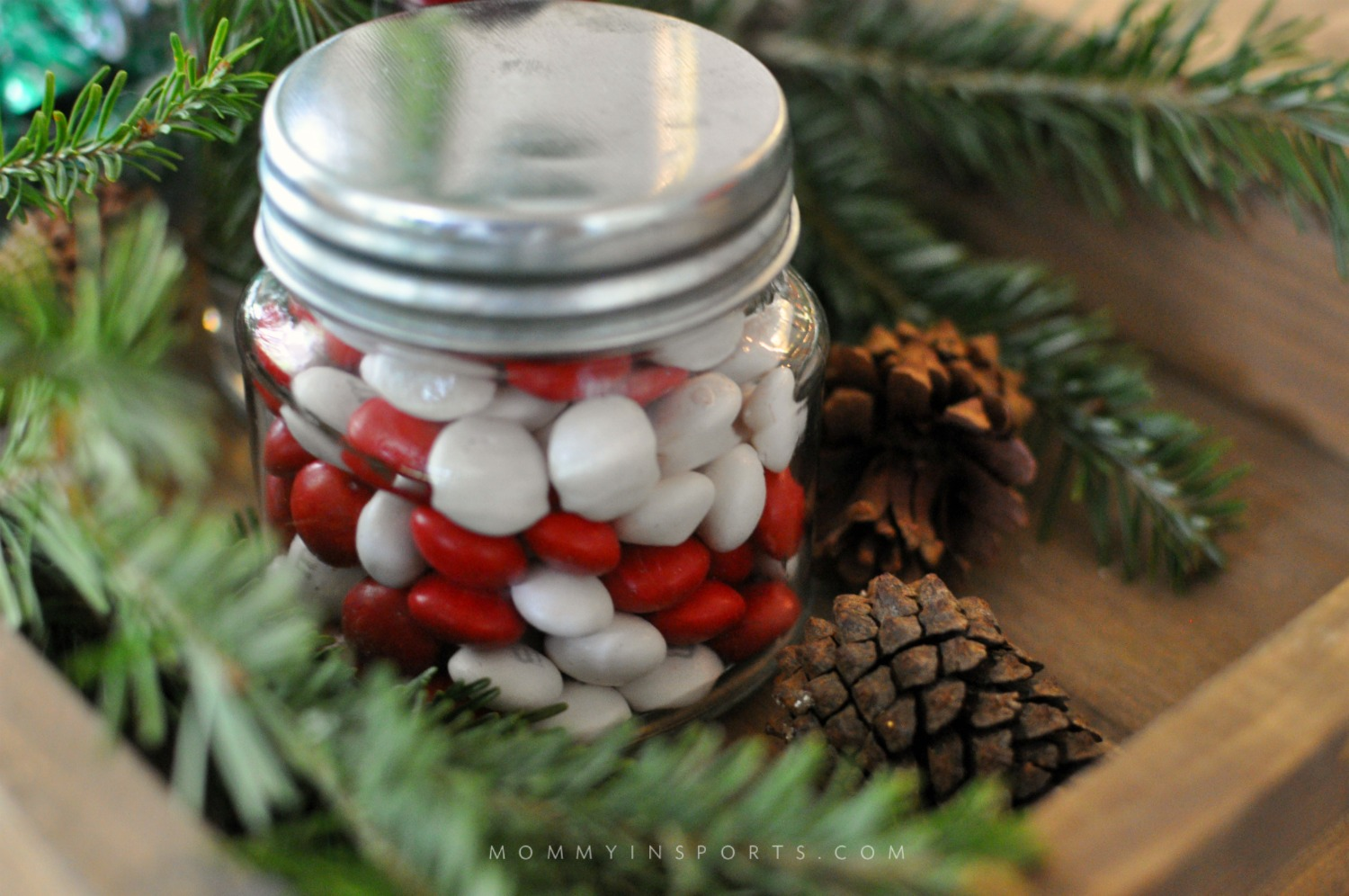 A wooden box or wine crate is perfect for an ottoman tray or centerpiece! Fill with flowers, cranberries, Christmas tree clippings and jars of candy to create a simple DIY holiday centerpiece!