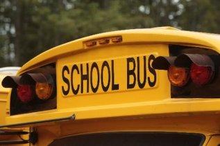 large_school bus