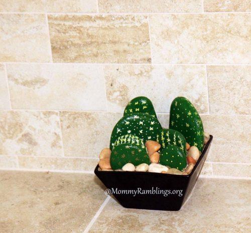 Cactus 7