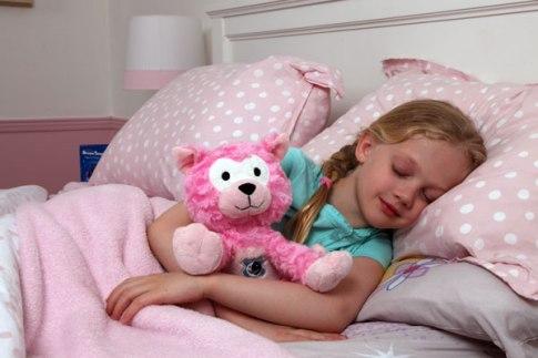dream pets cat child