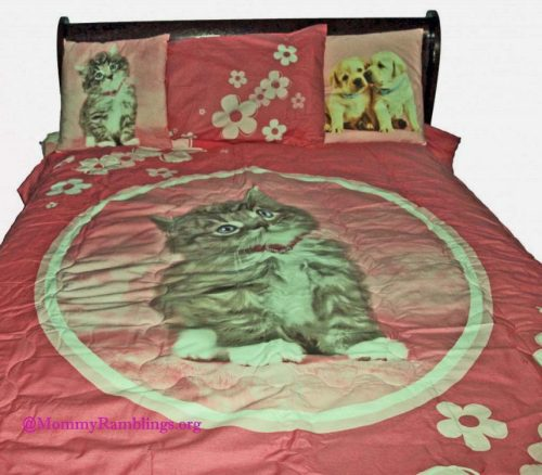 Rachael-Hale-Bedding cat
