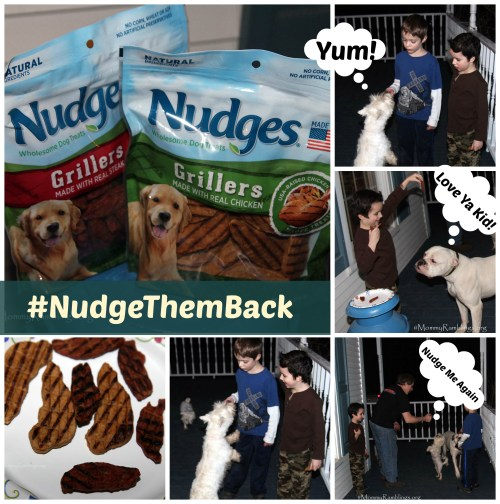 nudge collage treats