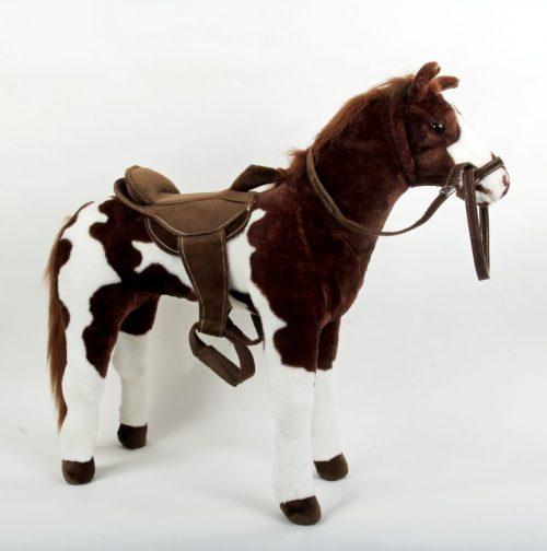 pinto-horse