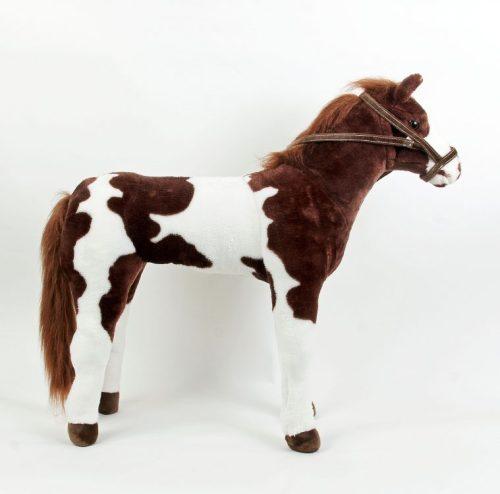 pinto-horse-3