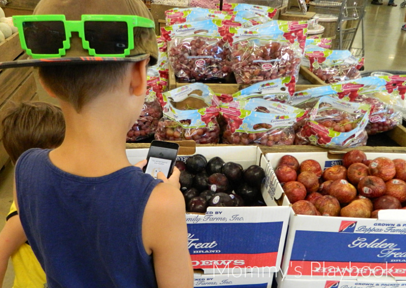 Using HuePets at the Grocery Store! Grocery Store Scavenger Hunt Fun!