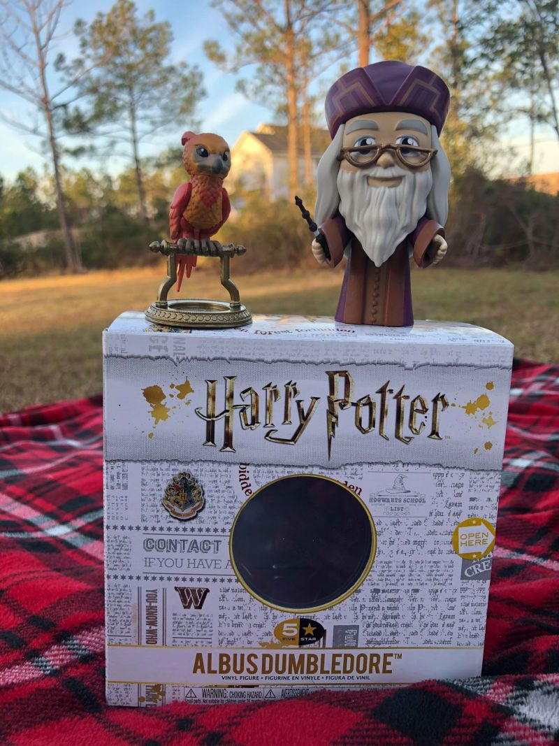 Harry Potter Gifts at DeepDiscounts.com #KidsGiftsBboxx #ad